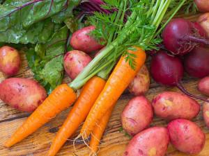 новые сорта овощей и картофеля