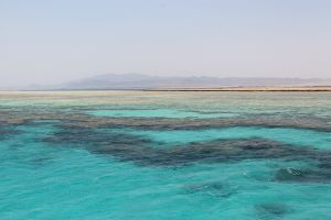 Фотография Красного моря