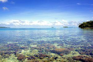 Фотография Соломонова моря