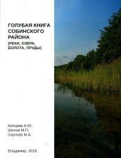 Обложка книги Голубая книга Собинского района