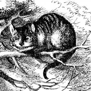 Чеширский кот на дереве. Графика