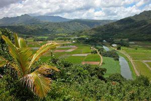 Долина в окружении гор, утопающая в тропической зелени