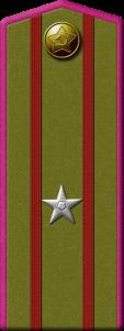 Погон_майор_1943-1945. На погоне две тонуие полоки малинового цвета (обозначение пехоты), которые делят погон на три части. В центральной части серебристая звезда.