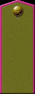 Полевые погоны пехотинца. Защитный цвет, окантовка. 1943 г.