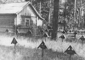 Как боролись с эпидемиями. Кладбище военнопленных в Камешкове