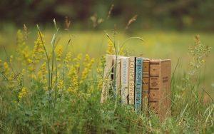 Разные книги на траве