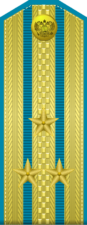Парадный погон полковника Военно-космических сил