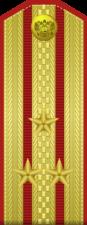 Парадный погон полковника сухопутных войск