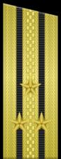 Погон к парадной форме одежды «капитана 1-го ранга» ВМФ