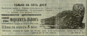 Дрессированные морские львы рские львы // Муромский край. - 1914. - 13 февраля