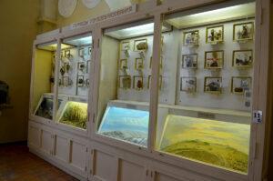 Центральный музей почвоведения им. В.В. Докучаева