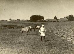 Лев Николаевич Толчтой на поле