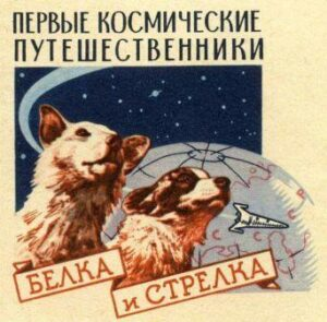 Плакат Белка и Стрелка