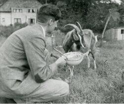 Джордж Оруэлл со своим питомцем