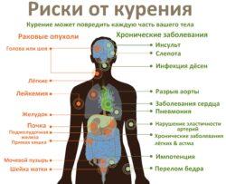 Риски развития заболеваний органов человека при курении