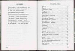 Содержание книги Шлыгина