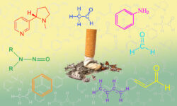 Химический состав сигареты