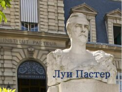 От Архимеда до Хокинга: французский микробиолог Луи Пастер